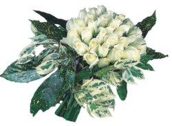 Bartın internetten çiçek siparişi  9 Beyaz gül Özel kisiler için