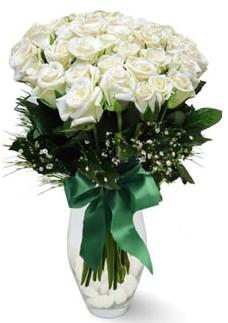 19 adet essiz kalitede beyaz gül  Bartın çiçekçiler