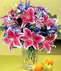 Bartın çiçek mağazası , çiçekçi adresleri  Sevgi bahçesi Özel  bir tercih
