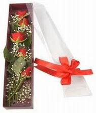 kutu içinde 5 adet kirmizi gül  Bartın internetten çiçek siparişi