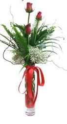 Bartın çiçek siparişi sitesi  3 adet kirmizi gül vazo içerisinde