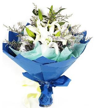 Bartın anneler günü çiçek yolla  4 adet dal kazablankadan görsel buket