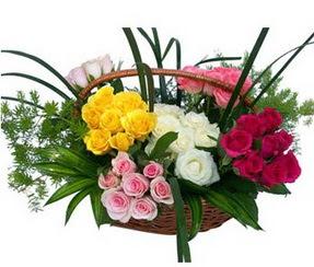 Bartın ucuz çiçek gönder  35 adet rengarenk güllerden sepet tanzimi