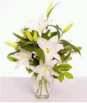 Bartın çiçek gönderme  2 dal cazablanca vazo çiçeği