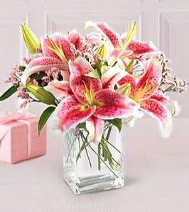 2 dal kazablanka görsel vazosu  Bartın çiçek siparişi sitesi