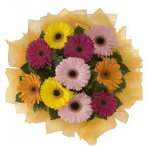 Bartın İnternetten çiçek siparişi  11 adet karışık gerbera çiçeği buketi