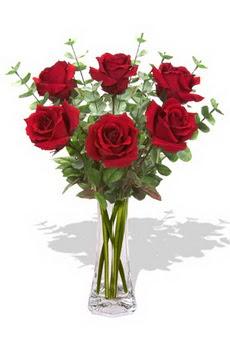 Bartın çiçekçi mağazası  6 kırmızı gül vazosu
