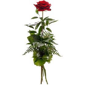 Bartın online çiçekçi , çiçek siparişi  1 adet kırmızı gülden buket