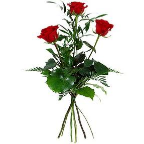 Bartın uluslararası çiçek gönderme  3 adet kırmızı gülden buket
