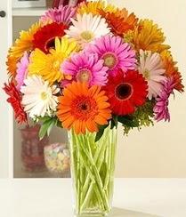 Bartın çiçek servisi , çiçekçi adresleri  15 adet gerbera çiçek vazosu