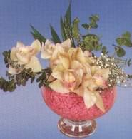 Bartın çiçek mağazası , çiçekçi adresleri  Dal orkide kalite bir hediye