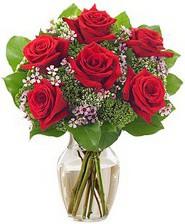 Kız arkadaşıma hediye 6 kırmızı gül  Bartın internetten çiçek siparişi