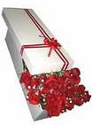 Bartın çiçekçi telefonları  11 adet 1.kalite magnum güller