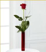 Vazo içerisinde 1 adet kırmızı gül  Bartın internetten çiçek siparişi