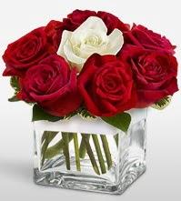Tek aşkımsın çiçeği 8 kırmızı 1 beyaz gül  Bartın uluslararası çiçek gönderme