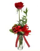 vazo içerisinde 1 adet kırmızı gül  Bartın çiçekçi telefonları
