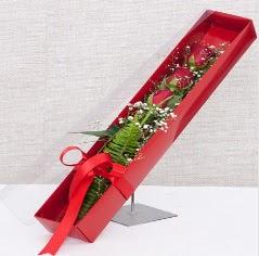 Kutu içerisinde 3 adet kırmızı gül  Bartın online çiçek gönderme sipariş