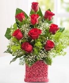 Cam içerisinde 9 adet kırmızı gül  Bartın internetten çiçek satışı