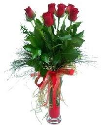 vazo içerisinde 5 kırmızı gül  Bartın güvenli kaliteli hızlı çiçek