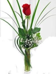 Cam içerisinde 1 kırmızı gül  Bartın çiçek gönderme sitemiz güvenlidir