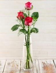 Cam içerisinde 3 kırmızı gül  Bartın çiçek satışı