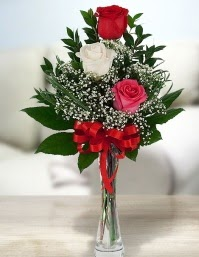 Camda 2 kırmızı 1 beyaz gül  Bartın ucuz çiçek gönder