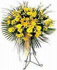 Bartın yurtiçi ve yurtdışı çiçek siparişi  Sari kazablanka Ferforje