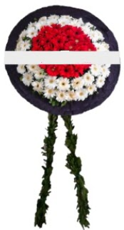 mozele çiçeği  Bartın hediye sevgilime hediye çiçek