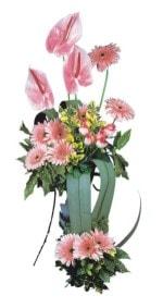 Bartın güvenli kaliteli hızlı çiçek  Pembe Antoryum Harikalar Rüyasi