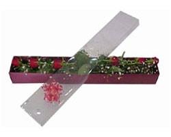 Bartın anneler günü çiçek yolla   6 adet kirmizi gül kutu içinde