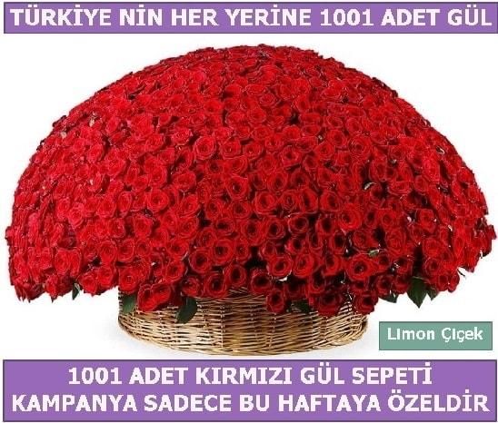 1001 Adet kırmızı gül Bu haftaya özel  Bartın İnternetten çiçek siparişi