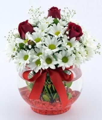 Fanusta 3 Gül ve Papatya  Bartın internetten çiçek satışı