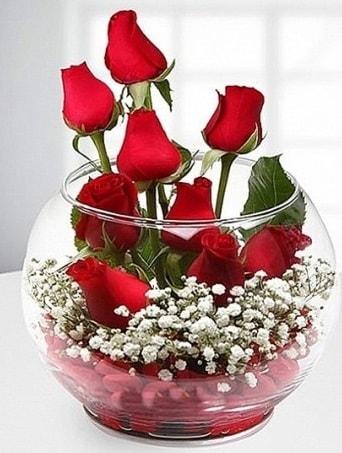 Kırmızı Mutluluk fanusta 9 kırmızı gül  Bartın çiçek siparişi sitesi