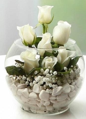 Beyaz Mutluluk 9 beyaz gül fanusta  Bartın çiçek siparişi sitesi