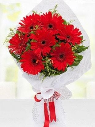 Kırmızı Gelbera Buketi  Bartın internetten çiçek siparişi