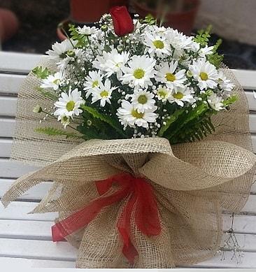 Papatya 1 adet kırmızı gül buketi  Bartın çiçekçiler