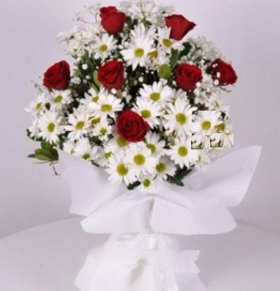 7 adet kırmızı gül ve papatyalar krizantem  Bartın internetten çiçek satışı