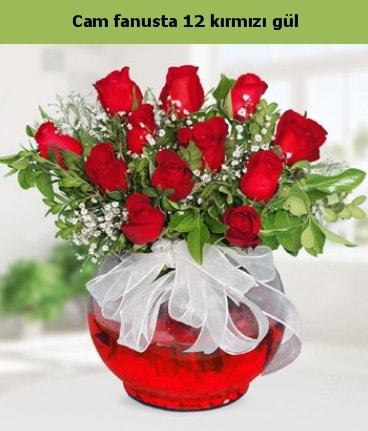 Cam içerisinde 12 adet kırmızı gül  Bartın internetten çiçek satışı
