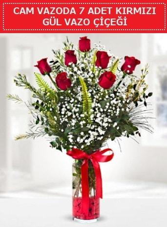 Cam vazoda 7 adet kırmızı gül çiçeği  Bartın çiçek gönderme sitemiz güvenlidir