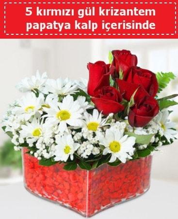 mika kalp içerisinde 5 kırmızı gül papatya  Bartın çiçek gönderme