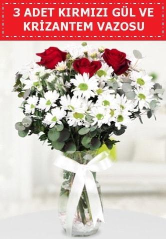 3 kırmızı gül ve camda krizantem çiçekleri  Bartın çiçek gönderme