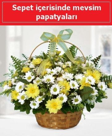 Sepet içerisinde mevsim papatyaları  Bartın ucuz çiçek gönder