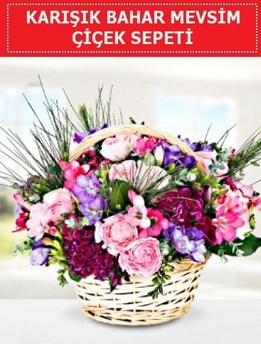 Karışık mevsim bahar çiçekleri  Bartın ucuz çiçek gönder