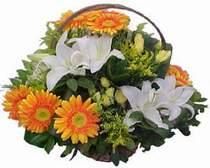 Bartın online çiçekçi , çiçek siparişi  sepet modeli Gerbera kazablanka sepet