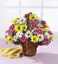 Bartın çiçekçiler  Mevsim çiçekleri sepeti